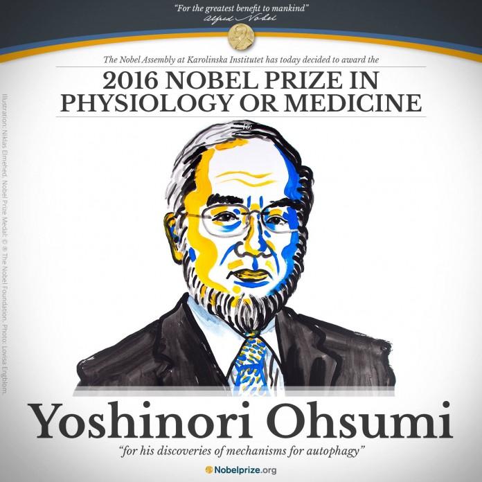 2016 Nobel Prize in Physiology or Medicine to Yoshinori Ohsumi